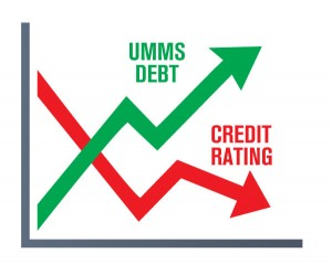 graphic_UMMS-chart